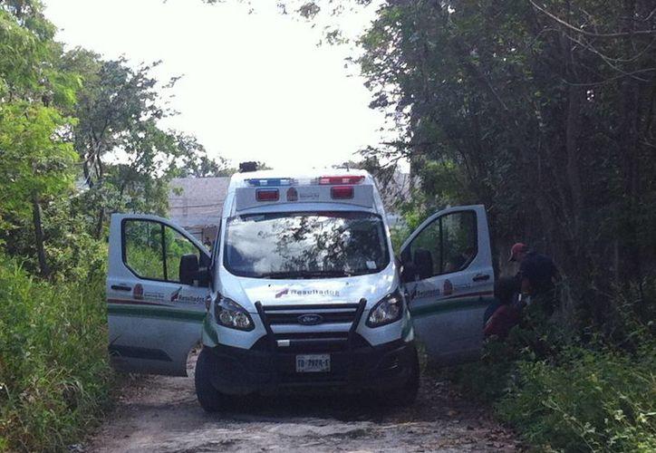 """El cuerpo fue ubicado en la zona denominada """"Triángulo de la muerte"""". (Pedro Olive/SIPSE)"""