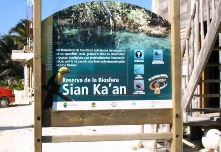 Gestionan proyectos para que la Reserva de Sian Kaán beneficie a las comunidades aledañas de la zona maya. (Cortesía/Internet)