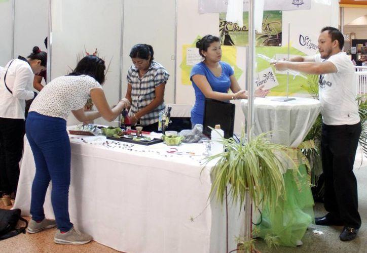 Los proyectos elegidos en el programa 'Certeza joven' serán acreedores a montos de hasta 50 mil pesos para impulsar su negocio. (Archivo/SIPSE)
