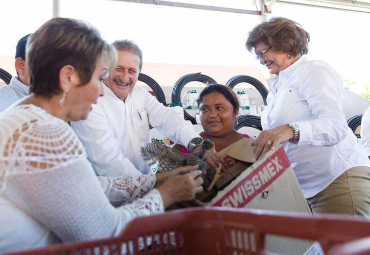 Paquetes tecnológicos y aves de traspatio recibieron horticultores y amas de casa en Mocochá por parte del gobierno de Yucatán. (SIPSE)