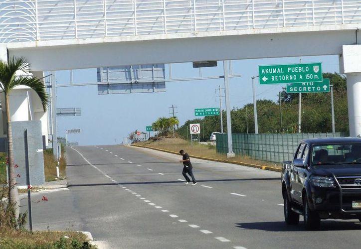 A pesar de que es más seguro usar los puentes elevados para cruzar la carretera federal, muchos peatones arriesgan sus vidas y pasan debajo de ellos.  (Rossy López/SIPSE)