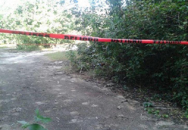El cuerpo fue hallado un kilómetro adentro de la carretera federal al ex campamento chiclero de Lázaro Cárdenas. (Redacción/SIPSE)