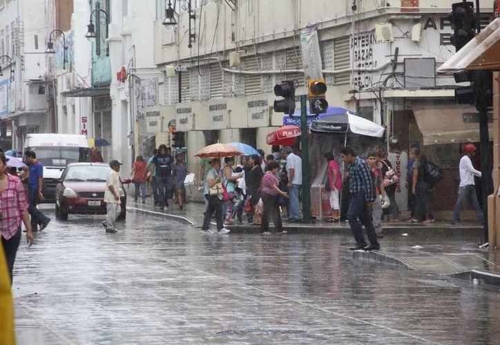 Comerciantes del pasaje Cecilio Chi dicen que con ellos no llegó la modernización del sistema de captación de aguas, como pasó en el resto del Centro Histórico. (SIPSE)