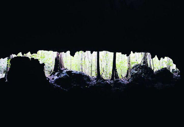 En los cenotes radica la riqueza natural y los sistemas acuíferos de la Riviera Maya que deben preservarse. (Octavio Martínez/SIPSE)
