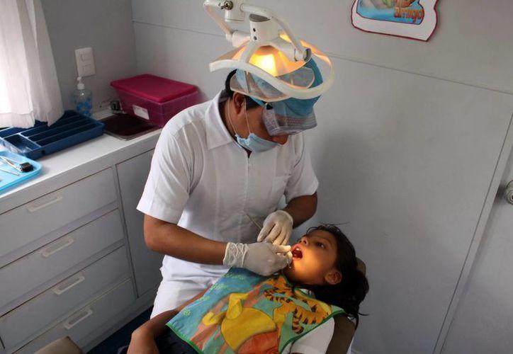 Tan solo el IMSS Yucatán espera brindar más de tres mil consultas dentales durante la semana. (SIPSE)