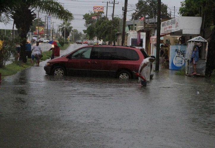 Quintana Roo se prepara ante una contingencia. (Ángel Castilla/SIPSE)