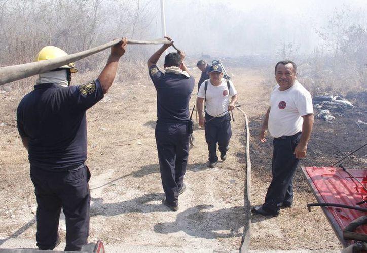 Del lunes 18 al viernes 22 de febrero se registraron 15 incendios en el estado. (Juan Albornoz/SIPSE)