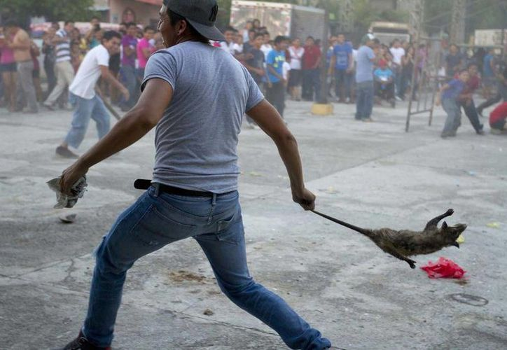 Imagen del fotógrafo yucateco Hugo Borges publicada por el sitio vice.com, en un reportaje sobre un ritual, en Citilcum, Yucatán, y que fue compartida como si fuera del enfrentamiento CNTE-Policía federal en Oaxaca. (vice.com)