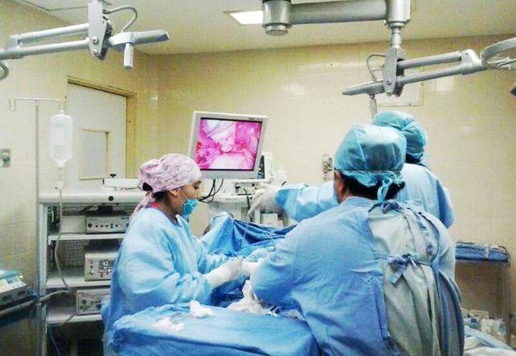 El traslado de órganos será más fácil y llegará a más personas que lo necesitan. (Milenio Novedades)
