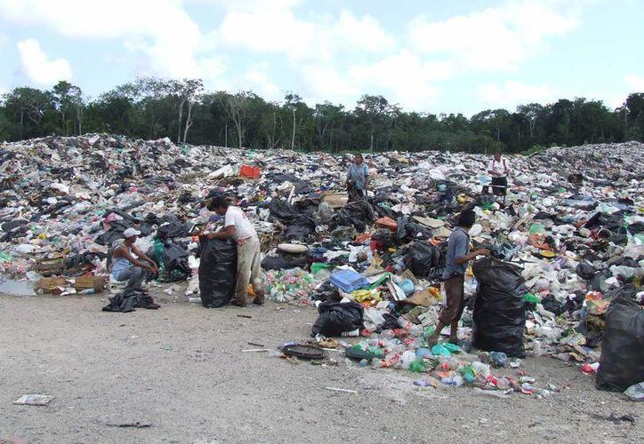 Con el nuevo relleno sanitario se evitarán tiraderos de basura. (Rossy López/SIPSE)
