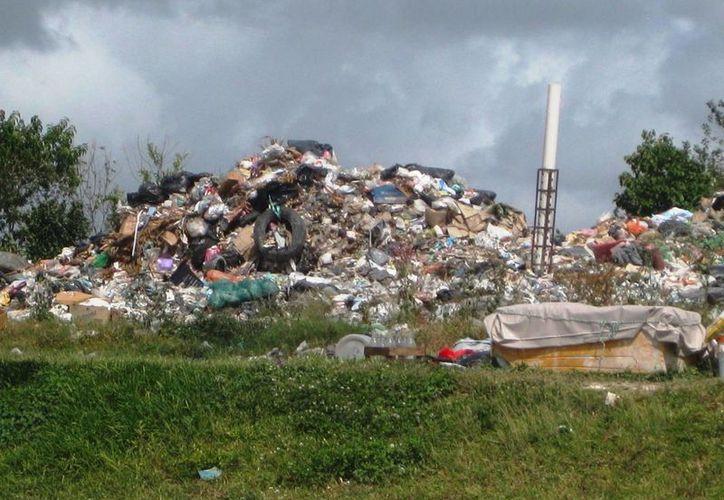 La mayoría de los basureros no están cumpliendo eficientemente con su función.(Javier Ortiz/SIPSE)