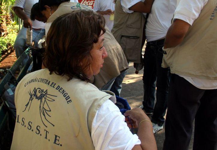 Las autoridades mantienen la lucha contra el mosquito. (Milenio Novedades)