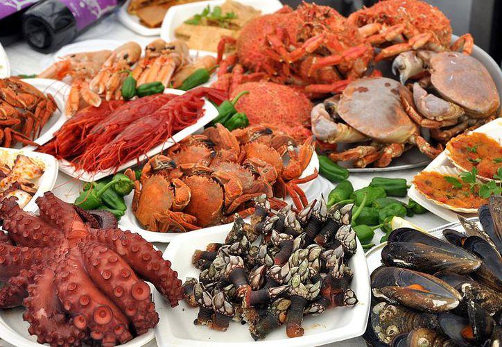 Los mariscos son una fuente importante de vitaminas del grupo B (B1, B2, B3, B12). (Telemax).