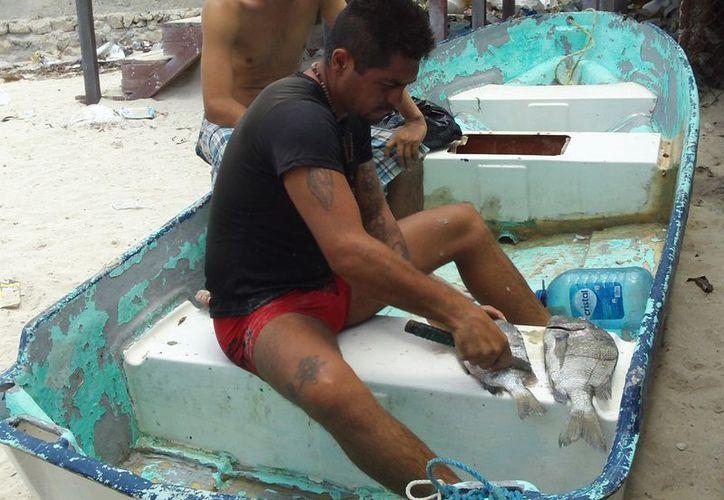 El apoyo por la veda consiste en 300 pesos y una despensa a la semana. (Manuel Pool/SIPSE)
