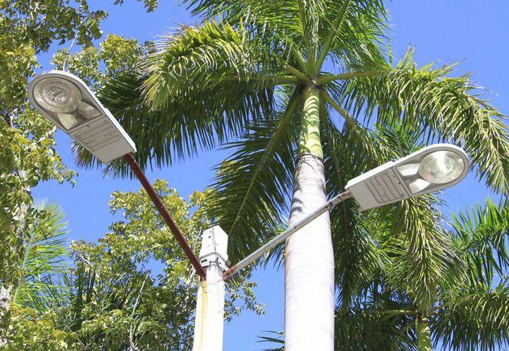Los trabajadores realizarán el cambio de luminarias de tipo convencional a LED en el municipio de Solidaridad. (Harold Alcocer/SIPSE)