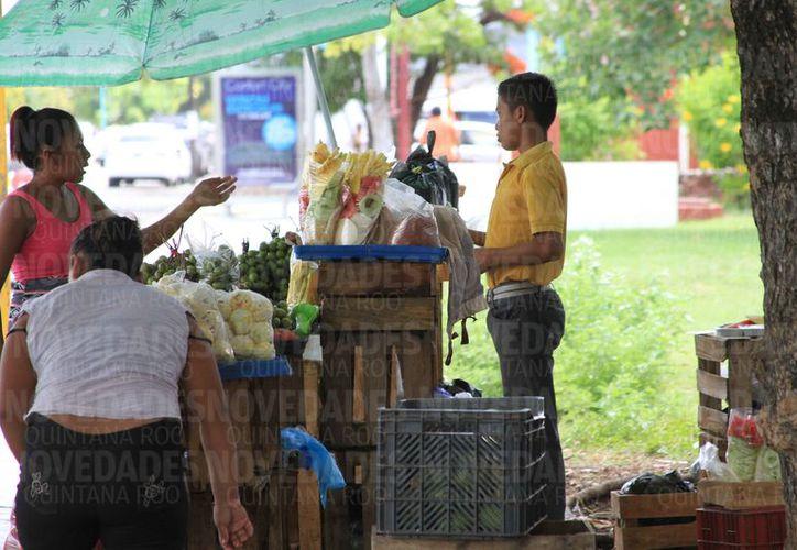 En Quintana Roo más dfe 10 mil estudiantes de sexto de primaria trabajan. (Joel Zamora/SIPSE)
