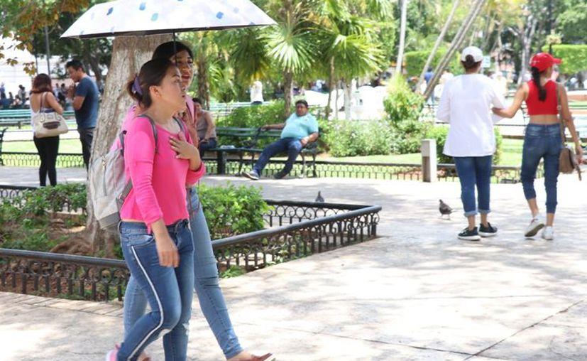Para este martes, se pronostica valores máximos de entre los 35 a 39 grados centígrados en Yucatán. (Daniel Sandoval)