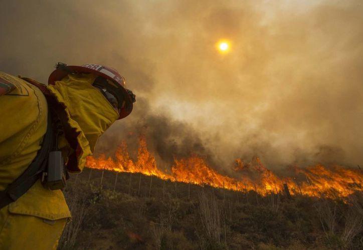 Los meteorólogos dijeron que la mayor humedad que se registrará el fin de semana ayudará a los bomberos. (Agencias)