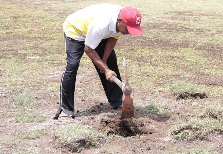 La lombricultura tiene beneficios sustentables para el ambiente, productores y consumidores. (Tomás Álvarez/SIPSE)