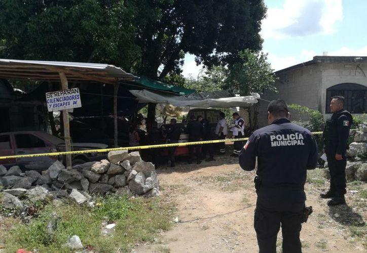 Elementos de la Policía Municipal atendieron el reporte de los hechos. (José Chi/SIPSE)