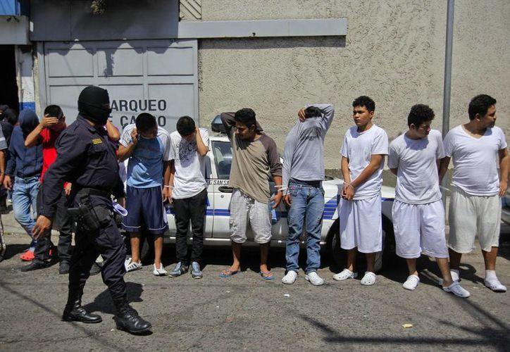 Imagen de contexto de agentes de la Policía Nacional Civil custodiando a pandilleros salvadoreños. (EFE/Archivo)