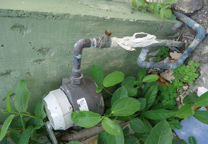 El 40% del agua potable de Tulum se desperdicia por fugas. (Rossy López/SIPSE)