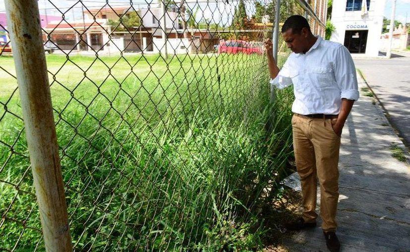 El regidor Gustavo Espadas Espinosa mira la yerba crecida en la cancha de futbol de Tanlum. (SIPSE)