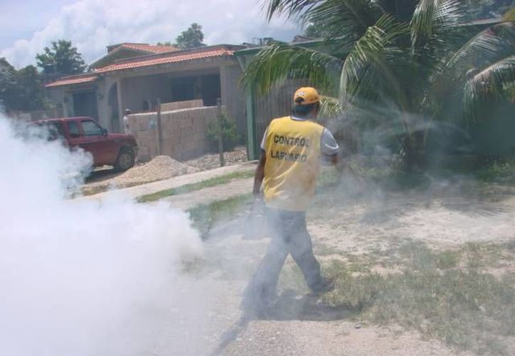 El personal se encargó de las acciones necesarias para evitar algún riesgo. (Manuel Salazar/SIPSE)