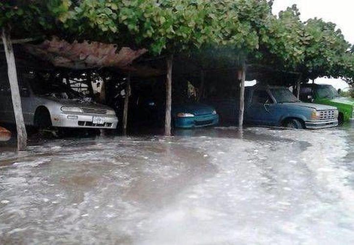 Alrededor de dos mil personas fueron evacuadas en el Puerto de San Carlos, Baja California Sur, debido a los efectos del huracán Norberto. (Milenio)