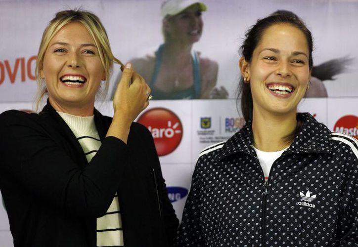 Tanto María Sharapova (i) como Ana Ivanovic dijeron que no admiran a ningún tenista, sólo tratan de asimilar las cualidades de sus rivales más tenaces. (Agencias)