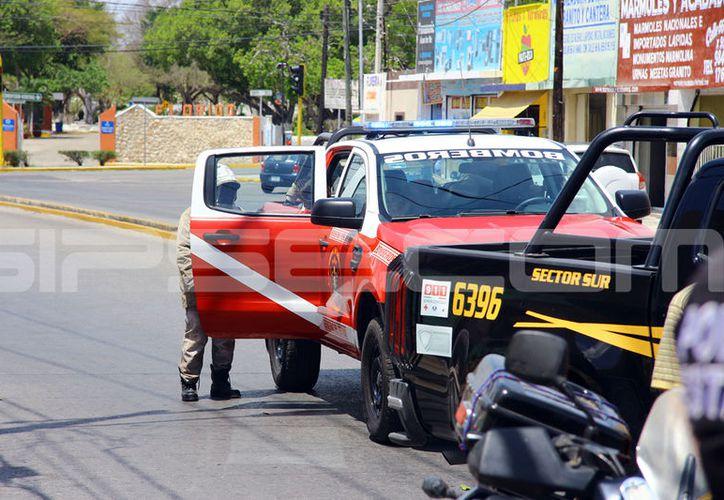 El ataque de las abejas movilizó a una buena cantidad de bomberos y policía de la SSP. (Jorge Pallota/SIPSE)