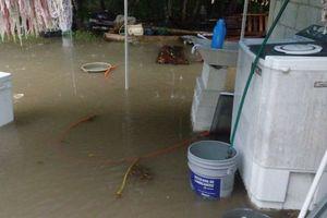 Entre el agua, habitantes de zona rural por lluvias