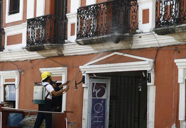 Bomberos utilizaron agua jabonosa para 'dispersar' el panal de abejas que se formó en la cornisa del balcón de un hotel, en el Centro de Mérida. (Jorge Pallota/SIPSE)