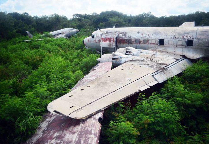 """Los aviones abandonados están """"atrapados"""" por la maleza en el Aeropuerto de Mérida. (Milenio Novedades)"""