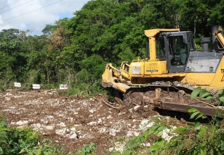Aparentemente, la obra, que fue clausurada, consiste en construir un camino de dos kilómetros para acceder a una zona residencial. (Rossy López/SIPSE)