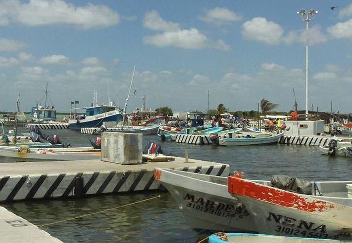 Tras el paso de la Tormenta Tropical 'Nate', consideran que el puerto se reabra a la navegación hasta el domingo próximo. (SIPSE)