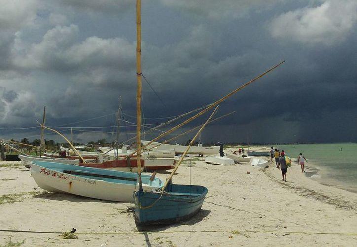 Los pescadores de Progreso se quedan en tierra porque no hay pulpo. (Milenio Novedades)