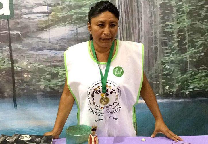 Mujeres de Yucatán cultiva en estanques la variedad de caracol 'Manzana Maya', que se reproduce naturalmente en cenotes, para obtener no sólo alimento sino también artesanías, las cuales elaboran con la concha. En la imagen, Dayane Canul Crespo, de la agrupación Hunab, que aprovecha el recurso. (Notimex)