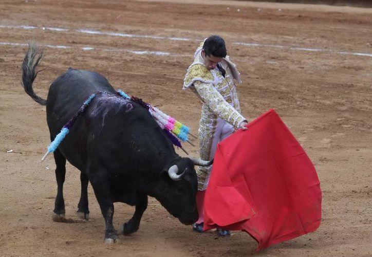 Salvador Caro Cabrera resaltó el maltrato que sufren los animales en este tipo de espectáculos. (Archivo/Notimex)
