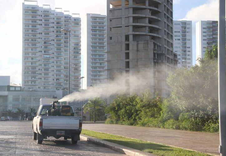 Las nebulizaciones serán realizadas en puntos como la avenida Bonampak hasta la colonia Bethel. (Tomás Álvarez/SIPSE)