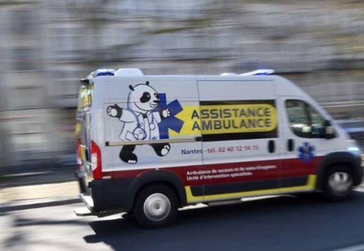 El servicio de urgencias pensó en un principio que se trataba de malos tratos hacia Samantha, sin embargo los forenses confirmaron que había sido un ataque de roedores. (24 Horas)