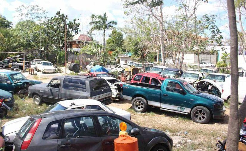 Se prevé buena participación de personas que deseen adquirir un vehículo usado. (Archivo/ SIPSE)
