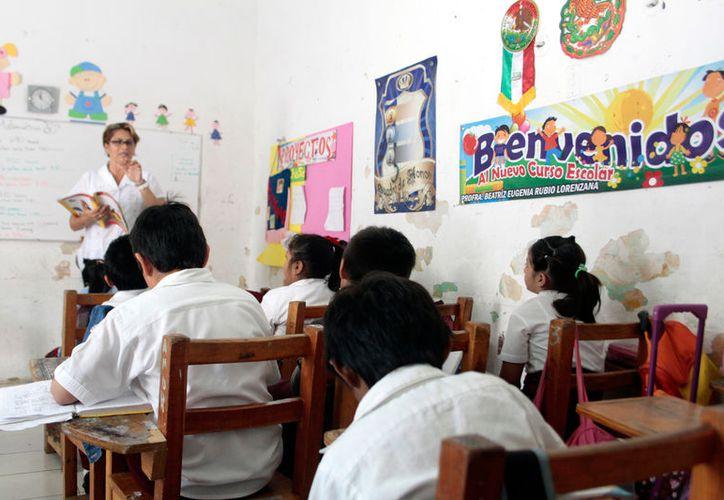 Maestros de Yucatán quieren que el gobierno les pague maestrías y doctorados, como parte de su formación por el nuevo modelo educativo. (Milenio Novedades)