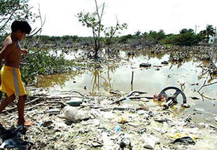 El río Santiago, en Jalisco, ha cobrado la vida de casi 700 personas desde 2008.  (Boca de Polen)