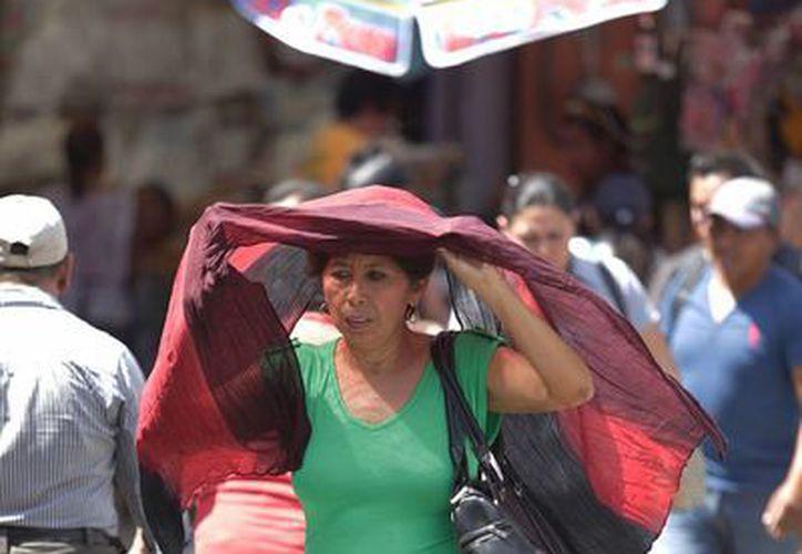 Para este miércoles se esperan  temperaturas máximas de entre 33 y 35 grados. (Notimex)