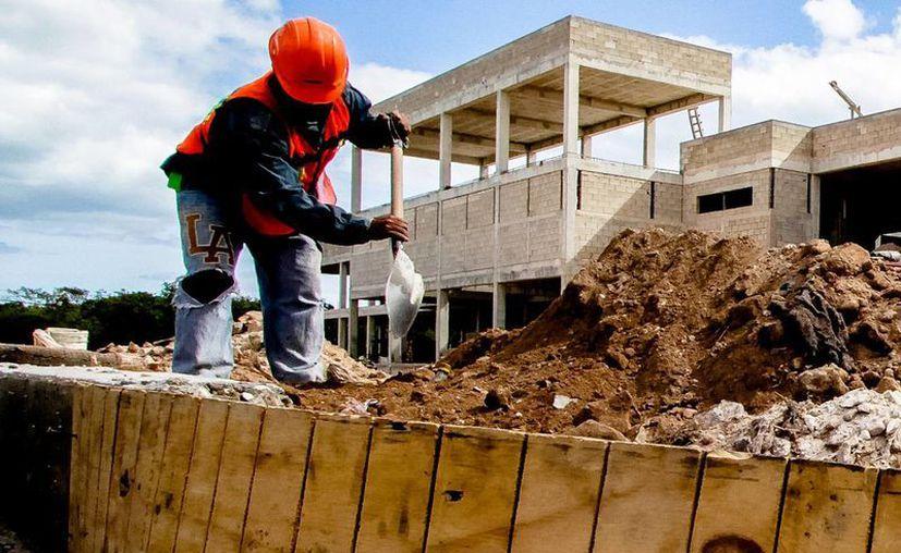 ONU detectó deterioro en condiciones laborales en estados como Michoacán, Chiapas y Morelos. La imagen se utiliza con fines estrictamente referenciales. (Archivo/Notimex)