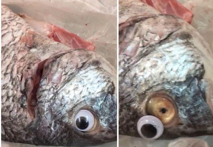 Los ojos de plástico eran para hacer pasar al pescado como fresco. (Especial)