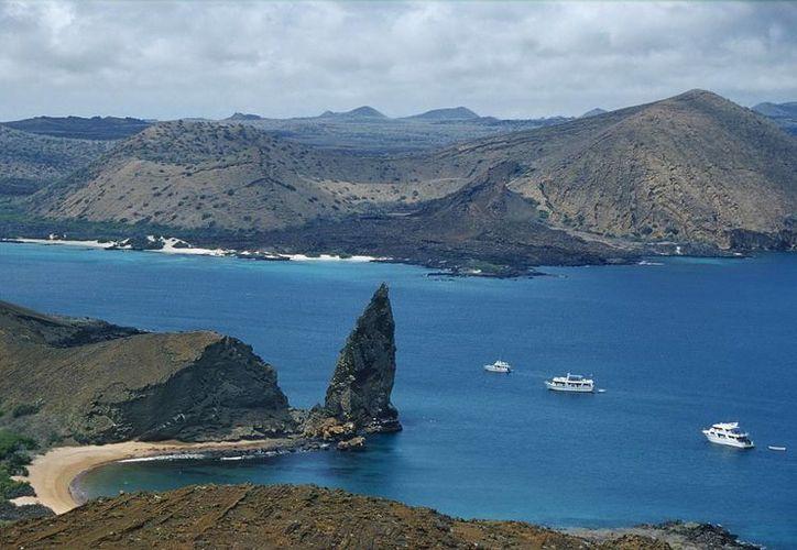 Tras el encallamiento del buque en Galápagos se han detectado 'impactos menores en el ecosistema'. (EFE)