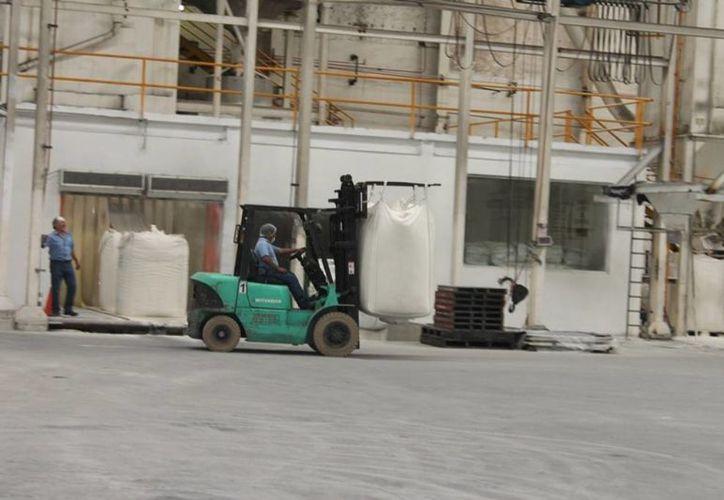 La afectación en el precio del azúcar en el mercado internacional se ha reflejado en los salarios de los cañicultores. (Edgardo Rodríguez/SIPSE)