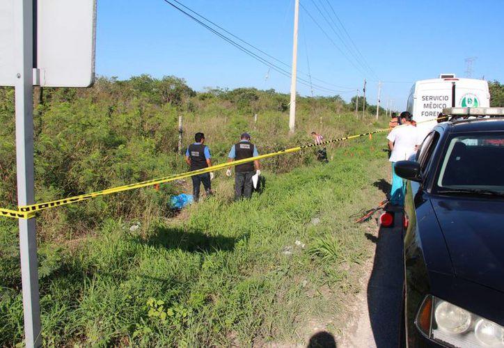 Un ciclista perdió la vida este sábado por la mañana al ser embestido por un auto en la vía Mérida - Dzityá. (Aldo Pallota/SIPSE)